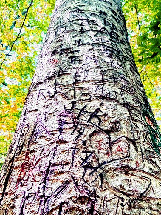 Tree - Kelly Guerra