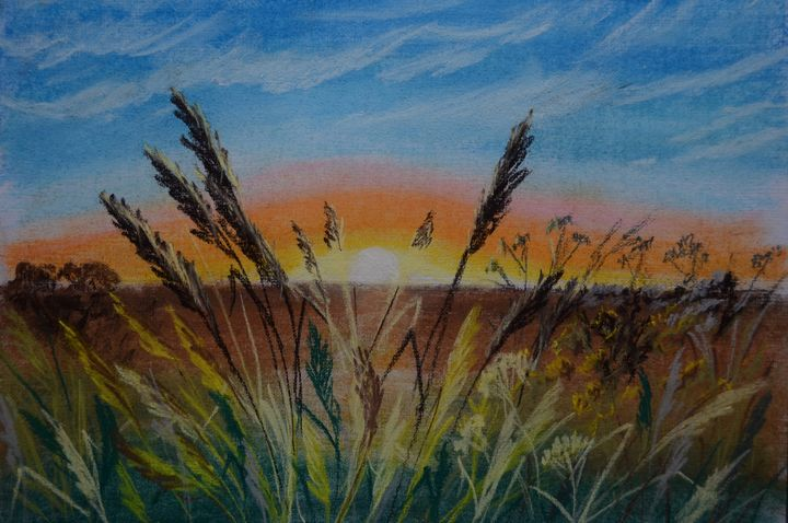 Sunset in the meadow - Nataliya Samoylova