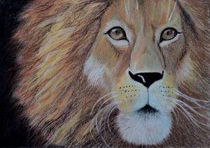 portrait of a lion in pastel
