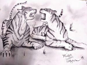 Fighting like Tigers