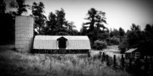 Old Barn, Upper Lake Gulch Road
