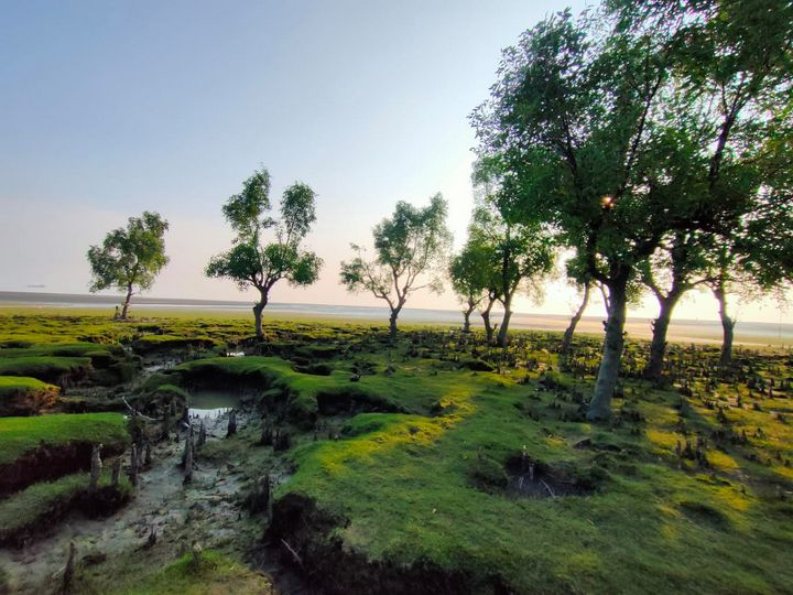 Nature landscape - Ashfay