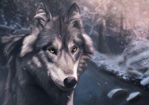 Sakura Wolf
