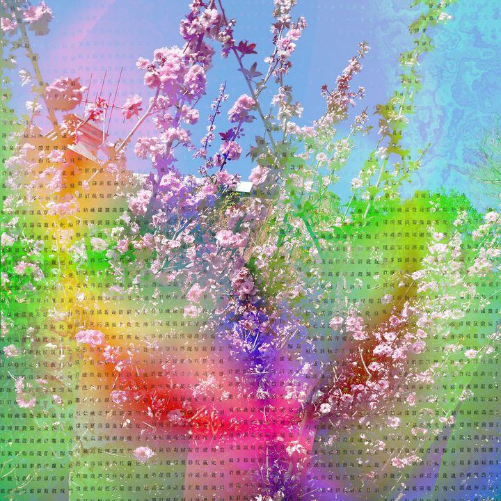 Rainbow Gay Cherrytree - Surrealpete