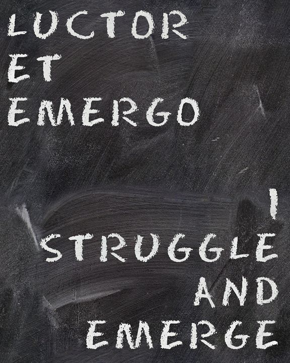Struggle and Emerge - hedehede