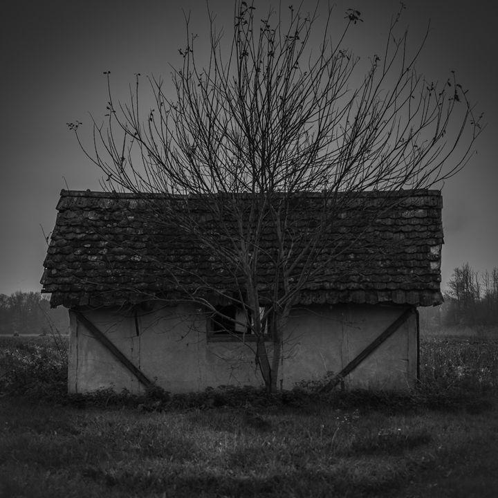 Old Cottage House - Zippa Studio