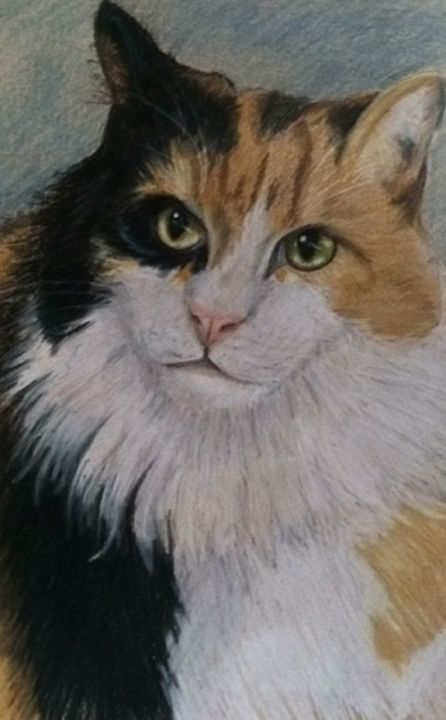 """""""Coco"""" - Paws & Portraits by Theresa"""