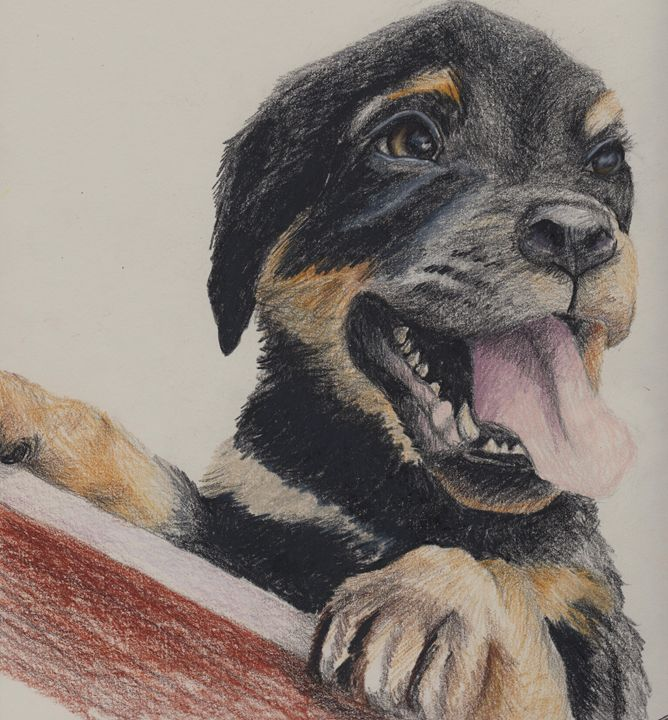 """Happy Rottie"" - Paws & Portraits by Theresa"