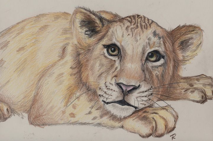 """Cowardly Cub"" - Paws & Portraits by Theresa"