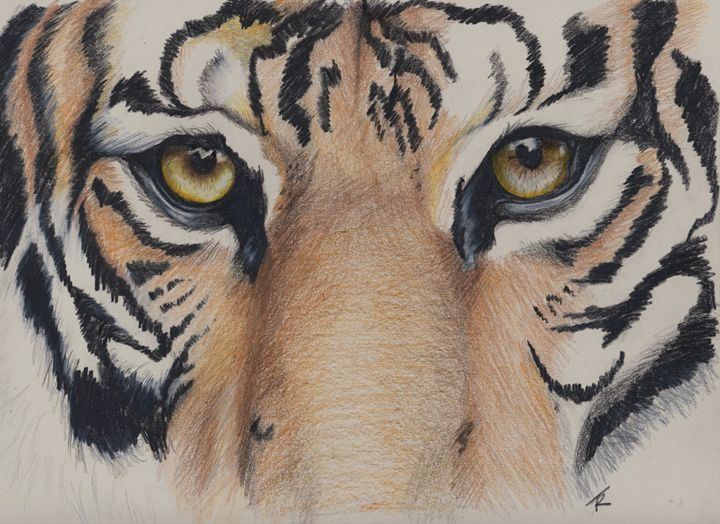 """""""Look into my Eyes..."""" - Paws & Portraits by Theresa"""