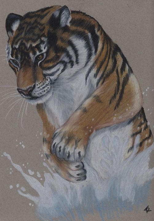 Leaping Tiger - Paws & Portraits by Theresa