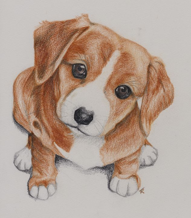 Curious Puppy - Paws & Portraits by Theresa