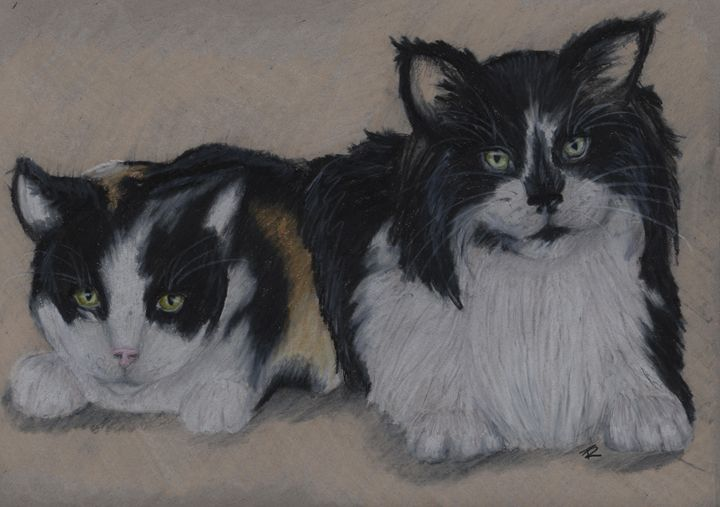 Anna's cats - Paws & Portraits by Theresa