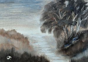 Wetlands Light 2