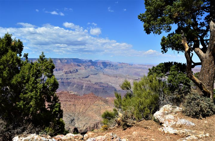 Grand Canyon Color - Thompson Gallery