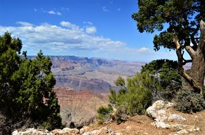 Grand Canyon Color