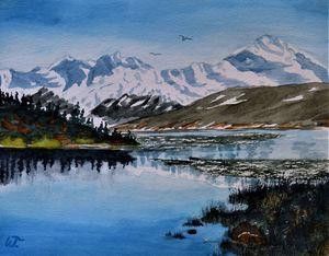Denali Majesty