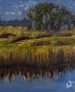 Wetland Distance
