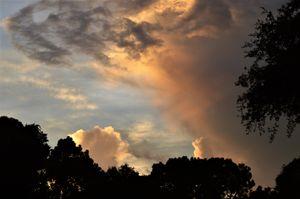 Transparent Sunset