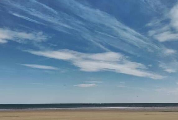 Redcar Beach 1 - Foxy
