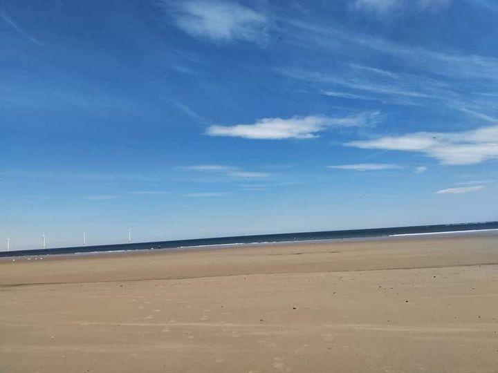 Redcar beach 2 - Foxy