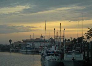 Sponge Docks Boats