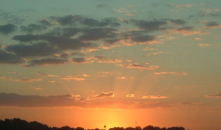 Heaven's Embrace -  Tashadragonlady