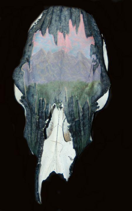 Old Wonders - Blackwater Art and Skulls