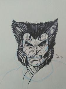 Wolverine after Rob Liefeld fan art