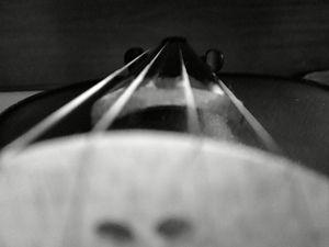 Violin Bottom - Top