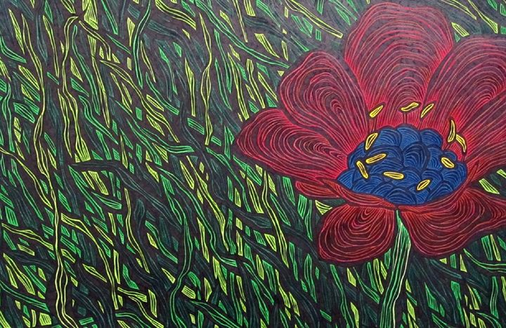 Adonis Annua - JBywaters Art