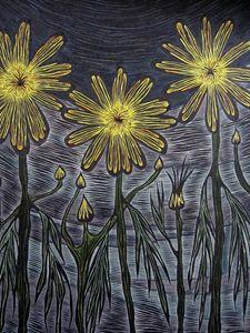 Argyranthemum Maderense - JBywaters Art