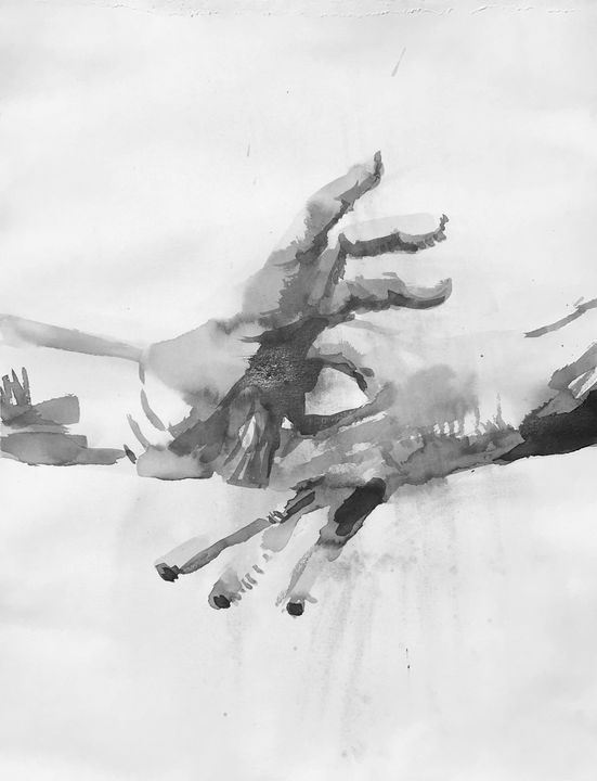 Spiral - Joshua Navis