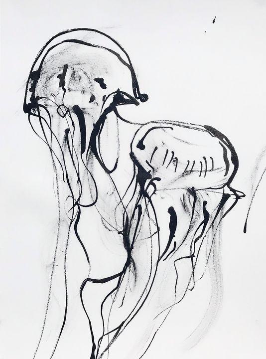 Jellies - Joshua Navis