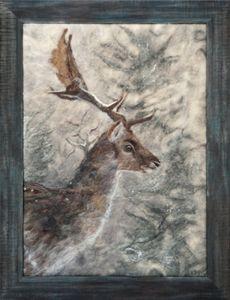 Fallow deer - AllyHallArt