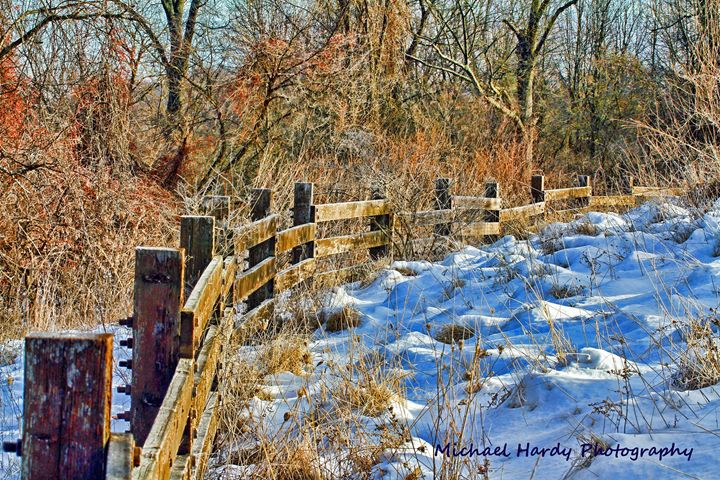 Winter fence row - Michael Hardy Photography