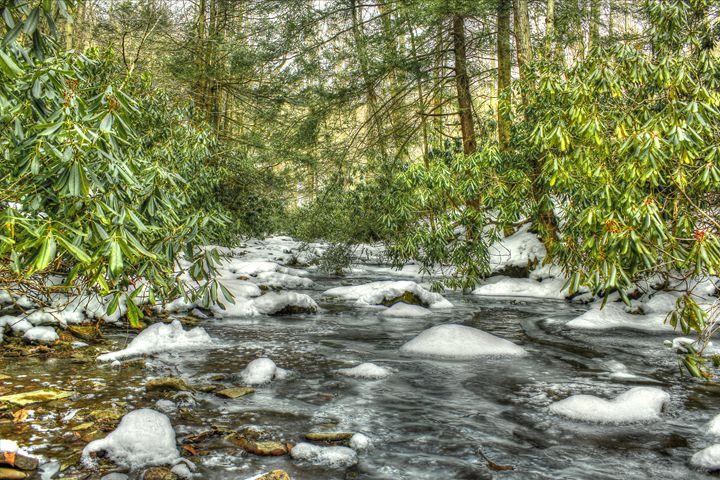 Winter stream - Michael Hardy Photography