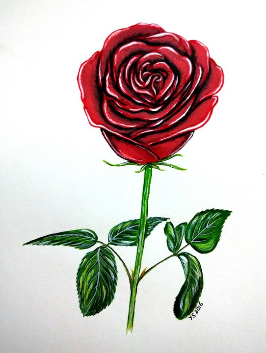 RED RED ROSE - YS Gallery