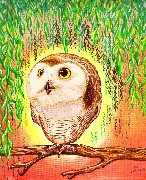 BABY OWL - YS Gallery