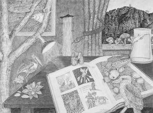Coffee Table Book - Kakadu