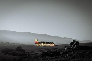 McDonald's Wasteland - i Am The arTist