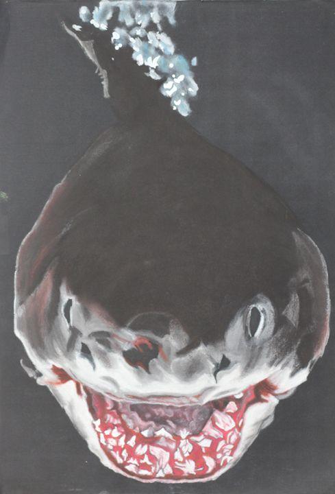 Shark - Relative, Creativ