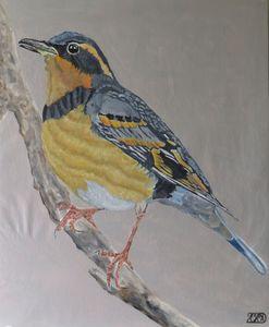 Bird 10.