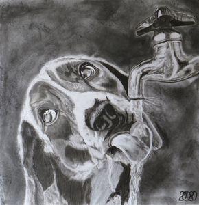 Drinking Dog