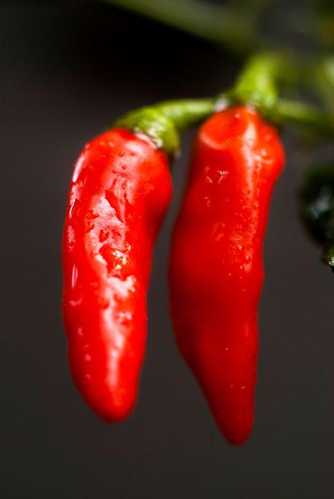 Red Chilli -01 - KePARAKan