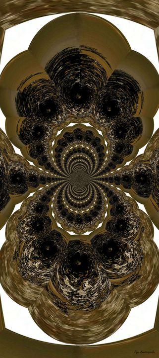Hypnotic Shell - Faye Anastasopoulou