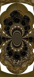 Hypnotic Shell
