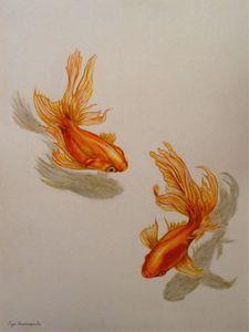 Goldfish Twins