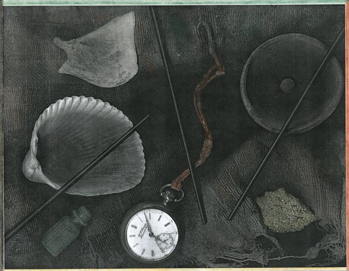Watch and Shell - David Jacobi