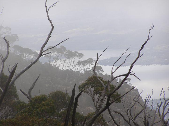 Mt Wellington - Trevor Donoghue, Don't know you art